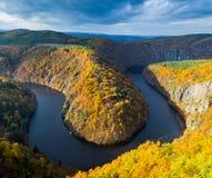 Vista panoramica del canyon del fiume con acqua scura e la curvatura a ferro di cavallo della foresta variopinta di autunno, fium Fotografia Stock