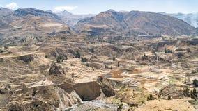 Vista panoramica del canyon di Colca, Perù, Sudamerica con l'agricoltura dei terrazzi Fotografia Stock Libera da Diritti