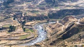 Vista panoramica del canyon di Colca, Perù, Sudamerica con l'agricoltura dei terrazzi Fotografia Stock