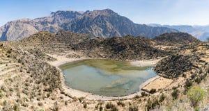 Vista panoramica del canyon di Colca, Perù, Sudamerica con l'agricoltura dei terrazzi Fotografie Stock Libere da Diritti