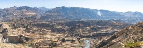 Vista panoramica del canyon di Colca, Perù, Sudamerica con l'agricoltura dei terrazzi Immagini Stock