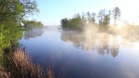 Vista panoramica del fiume con la foschia di mattina video d archivio