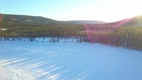 Vista panoramica del fuco aereo delle case, della foresta e dei campi tradizionali Norvegia stock footage