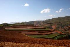 Vista panoramica del paesaggio cinese di agricoltura con le montagne e le colline Immagine Stock