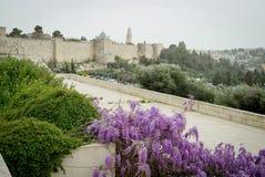 Vista panoramica del tetto di Gerusalemme fotografia stock libera da diritti