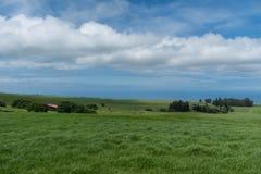 Vista panoramica della costa di Kohala sulla grande isola delle Hawai presa dall'più alta elevazione Immagini Stock