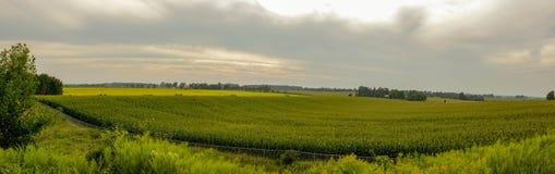 Vista panoramica della scena rurale della campagna al giorno, Ontario, Canada immagine stock