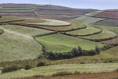 Vista panoramica della terra rossa di DongChuan, uno dei punti di riferimento nella provincia di Yunnan, la Cina Fotografie Stock Libere da Diritti