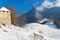 Vista panoramica delle alpi svizzere e degli alberi innevati in Switz Fotografia Stock