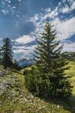 Vista panoramica delle montagne delle alpi Fotografia Stock