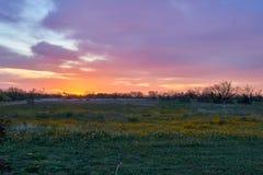 Vista panoramica di alba sopra il paesaggio rurale del deserto Colpo orizzontale fotografie stock
