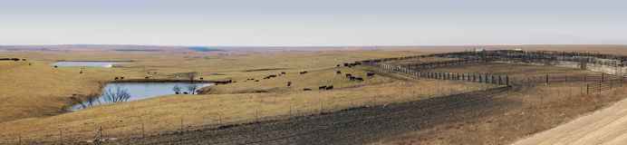 Vista panoramica di attività di allevamento in ranch delle Grandi Pianure immagine stock libera da diritti