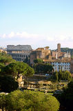 Vista panoramica di Colosseum e di tribuna romana, Roma immagini stock libere da diritti
