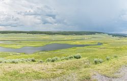Vista panoramica di regione paludosa immagine stock