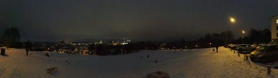 Vista panoramica di Vilnius Immagini Stock