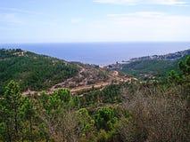 Vista panoramica e cespugli asciutti Fotografia Stock