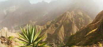 Vista panoramica incredibile della montagna ripida e degli itinerari trakking per inverdirsi burrone Piante enormi dell'agave in  Immagine Stock