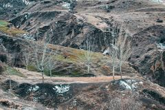 Vista panoramica magnifica la foresta di conifere sulle montagne vigorose di Carpathians e sui bei precedenti del cielo blu fotografia stock