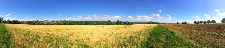 Vista panoramica sopra il campo di stoppie e l'acro Fotografia Stock