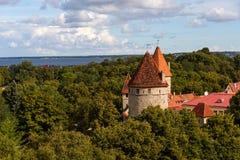 Vista panoramica stupefacente del muro di cinta e delle torri Città Vecchia di Tallin, Estonia fotografia stock libera da diritti