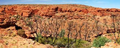Vista panoramica su Canyon del re Fotografia Stock Libera da Diritti