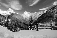 Vista panoramica sulle alpi julian nevose nell'inverno in bianco e nero, la Slovenia Fotografia Stock Libera da Diritti