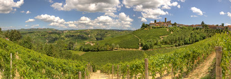 Vista panoramica sulle vigne e sulle colline in Italia. Immagine Stock Libera da Diritti