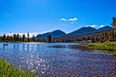 Vista para fora de Sprague Lake na mola fotografia de stock royalty free