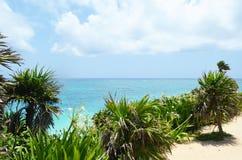 Vista para fora sobre o oceano das caraíbas de um penhasco em México Fotos de Stock Royalty Free