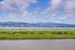 Vista para a linha costeira de Redwood City do parque de Bedwell Bayfront, área de Menlo Park, San Francisco Bay, Califórnia imagem de stock royalty free