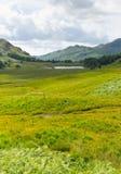 Vista para o distrito Cumbria Inglaterra Reino Unido do lago Blea Tarn entre grande Langdale e pouco Langdale Fotografia de Stock Royalty Free