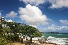 Vista para o mar da praia pacífica com água verde e o céu azul Fotos de Stock