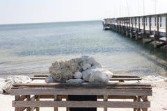 Vista para o mar e um cais Foto de Stock Royalty Free