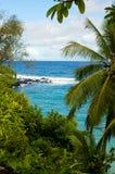 Vista para o mar havaiana Imagens de Stock