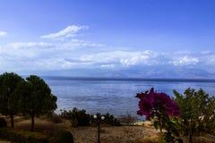 Vista para o mar sonhadora fotografia de stock