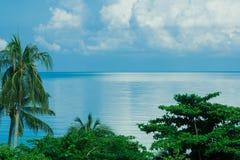 Vista para o mar tropical com palmeira foto de stock royalty free
