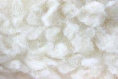 Particolare peloso bianco di struttura della pelliccia Fotografia Stock