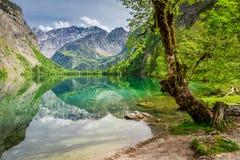 Vista per il lago verde della montagna in alpi tedesche Fotografia Stock