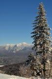 Vista per montare Washington in del New Hampshire Immagine Stock Libera da Diritti