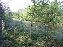 Vista piacevole davanti al piccolo fiume il giorno di estate Immagini Stock