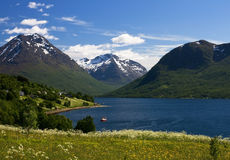 Vista piacevole del mare e della montagna in Norvegia Immagini Stock Libere da Diritti