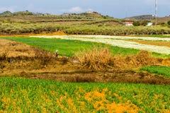 Vista piacevole del plateau di Moc Chau, Vietnam Fotografie Stock