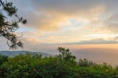 Vista piacevole di paesaggio di mattina a Phurua, Loei Fotografie Stock Libere da Diritti