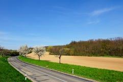 Vista pitoresca da estrada vazia do campo Imagem de Stock