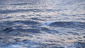 Vista pitoresca da superf?cie da ?gua azul contra o c?u nebuloso do por do sol e da costa de mar no fundo estoque stunning foto de stock