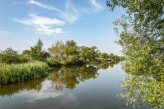 Vista pitoresca do lago no verde Imagem de Stock Royalty Free