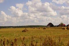 Vista pittoresca di bei covoni del campo e del fieno di erba verde nell'ambito del cielo nuvoloso e del sole blu Periferia di Mos Immagini Stock Libere da Diritti