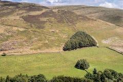 Vista pittoresca sulle colline vicino a Edale, parco nazionale di punta del distretto, Derbyshire, Inghilterra, Regno Unito Fotografie Stock