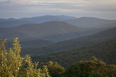Views That Go On Forever. The vista points in Shenandoah National Park are amazing. The land stretches out on all sides of these rocky hilltops Royalty Free Stock Image