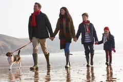 Vista posterior de la familia que camina a lo largo de la playa del invierno con el perro Foto de archivo